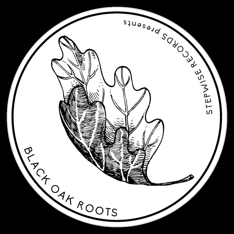 aDUBta Music - BLACK OAK ROOTS
